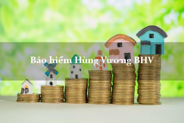 Bảo hiểm Hùng Vương BHV