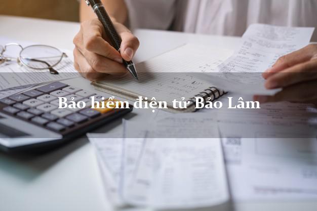 Bảo hiểm điện tử Bảo Lâm Lâm Đồng