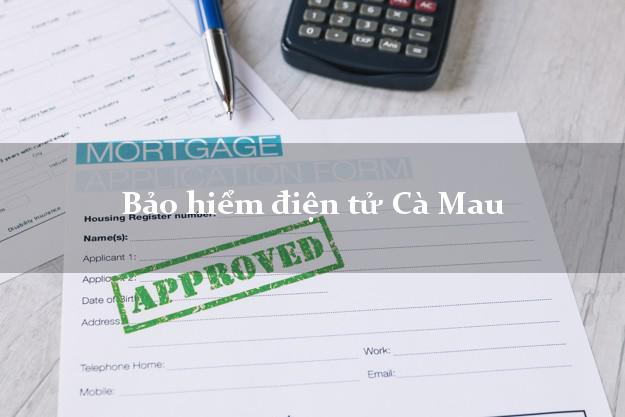 Bảo hiểm điện tử Cà Mau