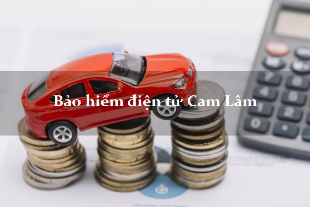 Bảo hiểm điện tử Cam Lâm Khánh Hòa
