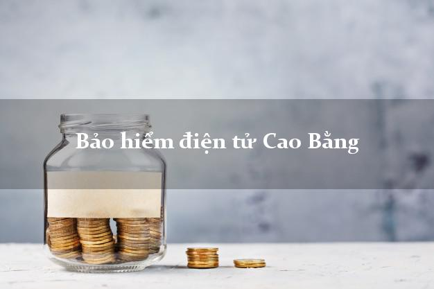 Bảo hiểm điện tử Cao Bằng
