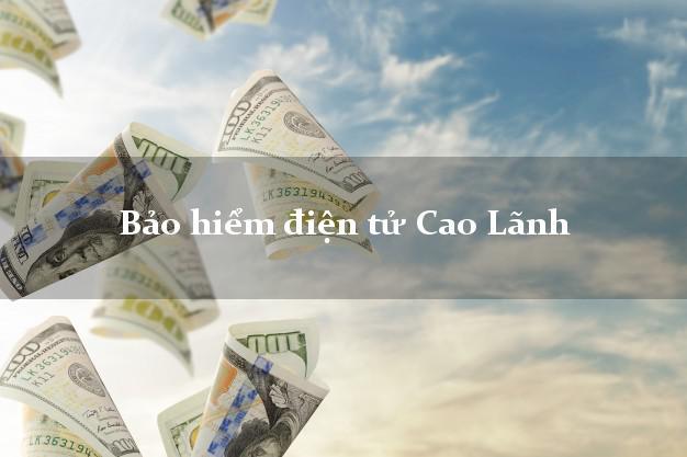 Bảo hiểm điện tử Cao Lãnh Đồng Tháp