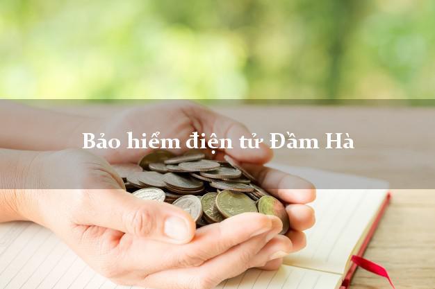 Bảo hiểm điện tử Đầm Hà Quảng Ninh