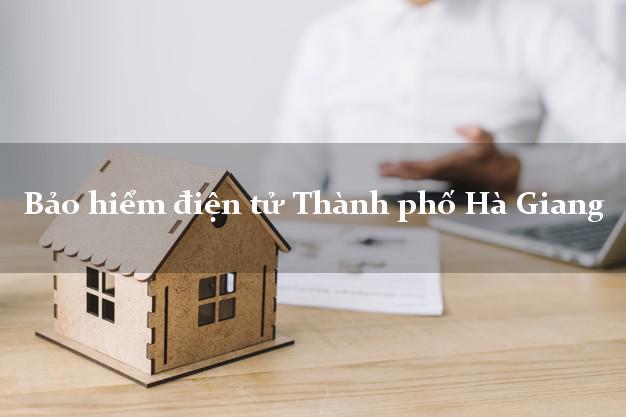 Bảo hiểm điện tử Thành phố Hà Giang
