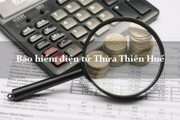 Bảo hiểm điện tử Thừa Thiên Huế