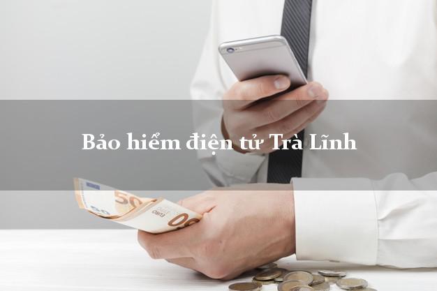 Bảo hiểm điện tử Trà Lĩnh Cao Bằng