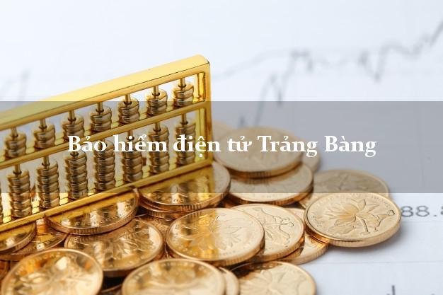 Bảo hiểm điện tử Trảng Bàng Tây Ninh