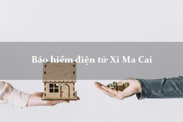 Bảo hiểm điện tử Xi Ma Cai Lào Cai